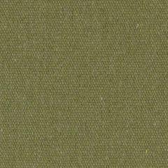 Order Cut Yardage: Sunbrella Renaissance Heritage Leaf 18011-0000