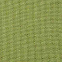 Sample of Sunbrella Spectrum Kiwi 48023-0000