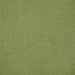 Order Cut Yardage: Sunbrella Cast Moss 48109-0000
