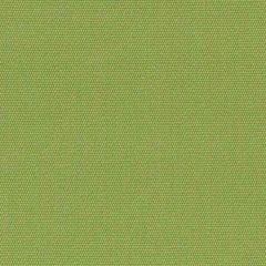 Sample of Sunbrella Canvas Ginkgo 54011-0000
