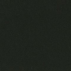 Order Cut Yardage: Sunbrella Canvas Raven Black 5471-0000